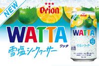 WATTA×雪塩